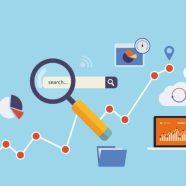 Mobile search Evolve Studio